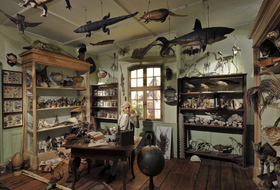 Zoological Museum car park: prices and subscriptions - Museum car park | Onepark
