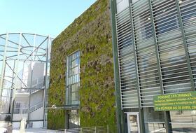 Parking Parque Zoológico de Montpellier : precios y ofertas - Parking de lugar turístico | Onepark