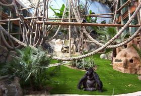 Parking Zoo de St Martin la Plaine à Saint-Étienne : tarifs et abonnements - Parking de lieu touristique | Onepark