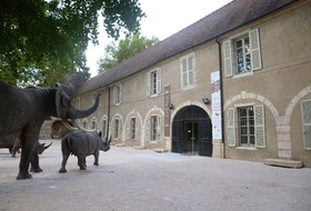 Muséum d'Histoire Naturelle car park: prices and subscriptions - Museum car park | Onepark
