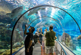 Aquarium de Barcelona car park: prices and subscriptions - Touristic place car park | Onepark