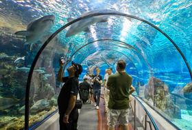 Parking Aquarium en Barcelona : precios y ofertas - Parking de lugar turístico | Onepark
