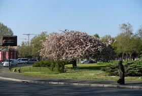 Parkeerplaats Porte d'Aubervilliers in Parijs : tarieven en abonnementen - Parkeren in een stadsgedeelte | Onepark